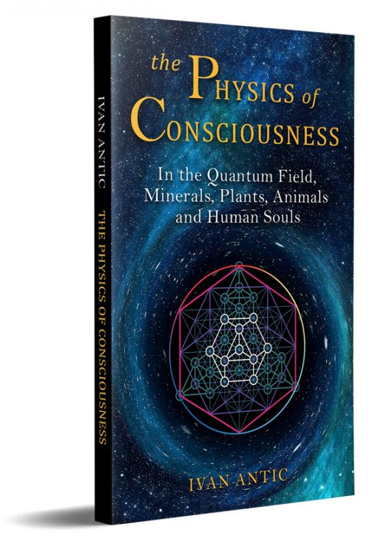 The Physics of Consciousness: In the Quantum Field, Minerals, Plants, Animals and Human Souls