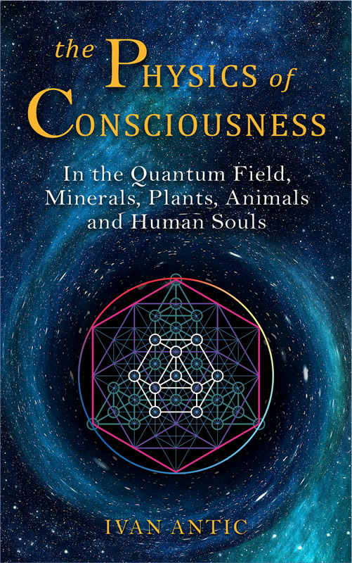 The Physics of Consciousness
